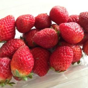夕方には国頭から森岡さんの朝摘みイチゴが到着します!ご連絡頂ければ、おとり置きも致します。