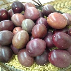 ご好評いただいている八重瀬町 白川ファームさんの無農薬栽培のパッションフルーツが再入荷しました!