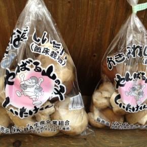 名護から生椎茸が到着!ヤンバルのおがくずで菌床栽培された椎茸、肉厚でとっても美味しいですよ。