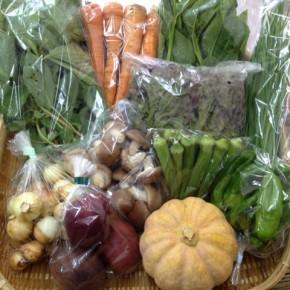 【第27回目】わが家のハルラボ商店『お野菜おまかせBOX』は先週土曜日に発送いたしました。今回の内容は自然栽培の玉ねぎ・モロヘイヤ・ピーマン・にら・サニーレタス・ツルムラサキ・人参、無農薬栽培の生しいたけ・島かぼちゃ・丸オクラ・パッションフルーツをお送り致しました。次回受付はお電話にて承ります。☎098-943-9575(詳細はコチラをクリック)