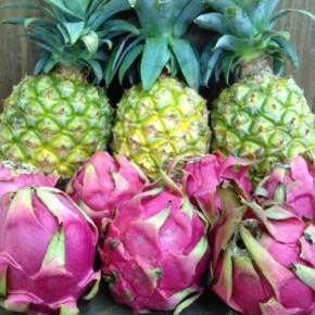 8/24(wed)本日の仕入れです。  白川ファームさんの大宜味村産 無農薬栽培のパイナップル、八重瀬町産の無農薬栽培のドラゴンフルーツ(赤)が入荷しました!