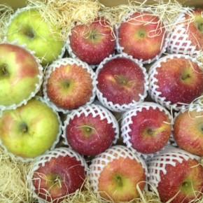 ご好評いただいている山口県産 低農薬りんごが再入荷しました!今回は「ふじ」「ぐんま名月」。どちらもしっかり甘味が乗っています。