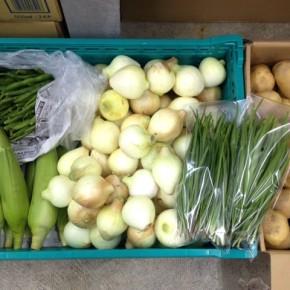 2/21(tue)本日の仕入れです。  糸満市 中村一敬さんの自然栽培のニラ・ジャガイモ・玉ねぎ、八重瀬町 島袋悟さんの自然栽培のインゲン、無農薬栽培のとうもろこし、が入荷しました!