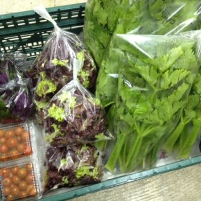 2/24(fri)本日の仕入れです。  北中城村ソルファコミュニティさんの自然栽培のセロリ・ミニトマト・ハンダマ・ベビーリーフ、が入荷しました。