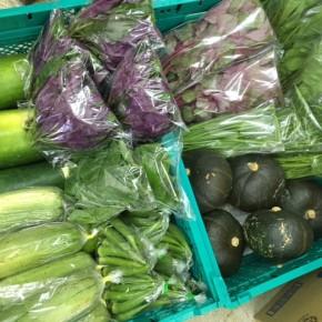 県産の自然栽培・無農薬の野菜は毎日入荷しています。入荷情報はコチラのホームページとTwitter(右側にあるアイコンから見られます)で毎日ご案内しています。
