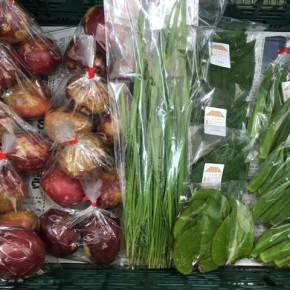 6/26(mon)本日の仕入れです。  北中城村ソルファコミュニティさんの自然栽培のツルムラサキ・角オクラ・にら・パッションフルーツ、が入荷しました。