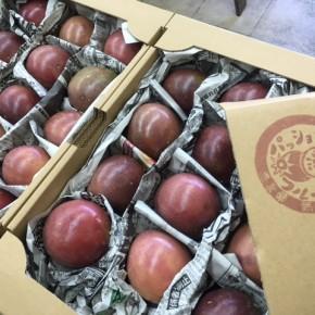 国頭で無農薬無肥料のイチゴを栽培している森岡さんが、この夏はパッションフルーツ栽培に挑戦!たくさん実ったとのことで、わが家のハルラボ商店にも分けて頂きました。箱を開けたとたんに広がるトロピカルな香り!味も最高です‼︎
