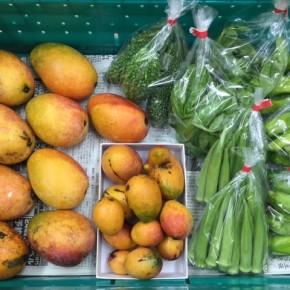 7/29(sat)本日の入荷です。  マサヨさんの無農薬栽培のマンゴー・ピーマン・おくら・ゴーヤー・バジル、が入荷しました!