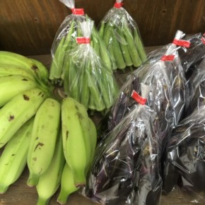 8/7(mon)本日の仕入れです。  うるま市 玉城勉さんの自然栽培のナス・おくら・ブラジル島バナナ、が入荷しました!