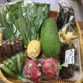 【第58回目】わが家のハルラボ商店『お野菜おまかせBOX』は本日9/25(mon)・26(tue)・27(wed)予約受付中!9/30(sat)発送。受付はお電話にて承ります。☎098-943-9575(詳細はコチラをクリック)※写真は前回の野菜BOXです。