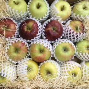昨年も大好評頂きました山口県産 減農薬リンゴが入荷です!今回は秋映、シナノスイート、シナノゴール、ゴールデンの4種になります。