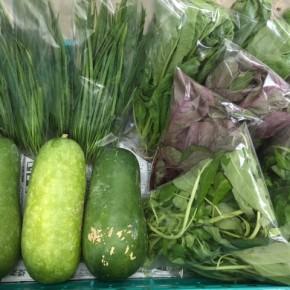 10/12(thu)本日の仕入れです。  糸満市 中村一敬さんの自然栽培のにら・アマランサス・白エンサイ・冬瓜、無農薬栽培のからし菜、が入荷しました!