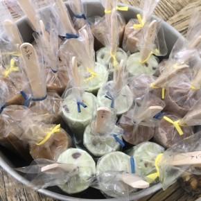 Haku△sanのヴィーガンアイスキャンディが入荷しました!オーガニックマンゴー、カカオバルサミコ、ミントニブの3種になります。