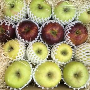 先週ご好評いただきました山口県産 減農薬リンゴが再入荷しました!今回は秋映・新世界・ゴールデンデリシャス・ぐんま名月、の4種になります。