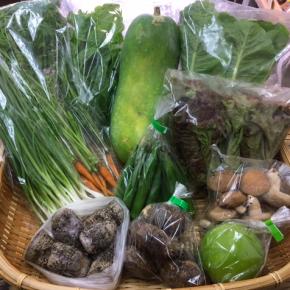 【第64回目】わが家のハルラボ商店『お野菜おまかせBOX』は12/4(mon)・5(tue)・6(wed)予約受付!12/9(sat)発送。受付はお電話にて承ります。☎098-943-9575(詳細はコチラをクリック)※写真は前回の野菜BOXです。