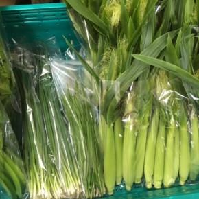 12/28(thu)本日の仕入れです。  糸満市 中村一敬さんの無農薬栽培のベビーコーン・青ネギ・自然栽培のセロリ・にらが入荷しました!