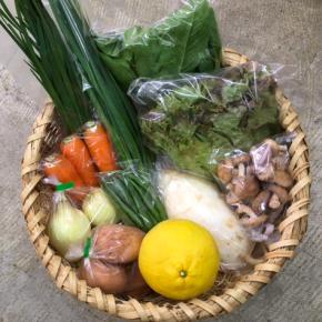 【第68回目】わが家のハルラボ商店『お野菜おまかせBOX』は2/5(mon)・6(tue)・7(wed)予約受付!2/10(sat)発送。受付はお電話にて承ります。☎098-943-9575(詳細はコチラをクリック)※写真は前回の野菜BOXです。