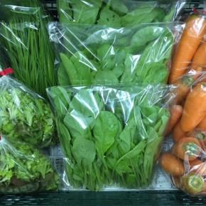 1/12(fri)本日の仕入れです。  北中城村ソルファコミュニティさんの自然栽培の小松菜・ベビーリーフ・人参・ネギ・ニラが入荷しました!