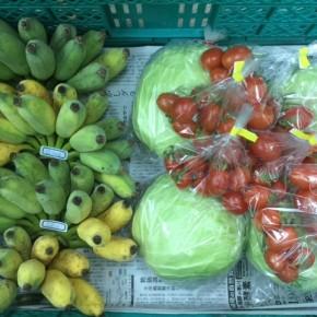 1/9(tue)本日の仕入れです。  うるま市 玉城勉さんの自然栽培のミニトマト・銀バナナが入荷しました!