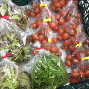 2/5(mon)本日の仕入れです。  うるま市 玉城勉さんのミニトマト、北中城村ソルファコミュニティさんの自然栽培のベビーリーフ・人参葉が入荷しました!