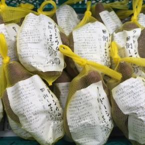 大宜味村 後藤さんのサツマイモが入荷しました!お米作りの裏作で栽培した『田倒し芋』は、キメが細かく甘みもたっぷり。じっくり火を入れてあげると甘さが一段と引き出されます。