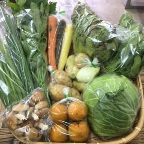 【第68回目】わが家のハルラボ商店『お野菜おまかせBOX』は先週土曜日に発送いたしました。今回の内容は自然栽培のカラフル人参・サニーレタス・にら・じゃがいも(アローワ)・ほうれん草、  無農薬栽培の新玉ねぎ・セロリ・ねぎ・キャベツ・生しいたけ・たんかんをお送り致しました。次回受付は2/19(mon)・20(tue)・21(wed)お電話にて承ります。☎098-943-9575(詳細はコチラをクリック)