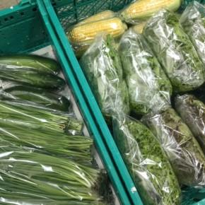 2/1(thu)本日の仕入れです。  糸満市 中村一敬さんの自然栽培のサニーレタス・リーフレタス・ニラ・無農薬栽培のズッキーニ・青ネギ・トウモロコシが入荷しました!