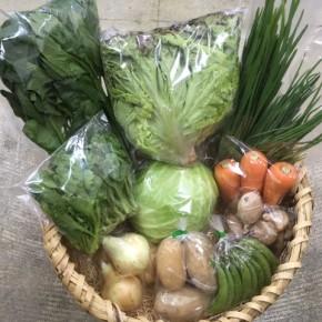 【第72回目】わが家のハルラボ商店『お野菜おまかせBOX』は4/2(mon)・3(tue)・4(wed)予約受付!4/6(fri)発送。受付はお電話にて承ります。☎098-943-9575(詳細はコチラをクリック)※写真は前回の野菜BOXです。