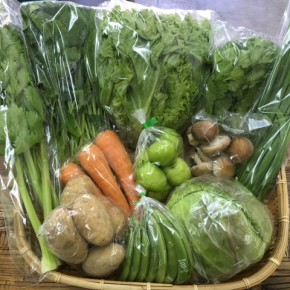 【第70回目】わが家のハルラボ商店『お野菜おまかせBOX』は先週土曜日に発送いたしました。今回の内容は自然栽培のジャガイモ(アローワ)・リーフレタス・ほうれん草・にら・セロリ・春菊・人参、  無農薬栽培のキャベツ・スナップエンドウ・インドナツメ・生しいたけをお送り致しました。次回受付は3/19(mon)・20(tue)お電話にて承ります。☎098-943-9575(詳細はコチラをクリック)