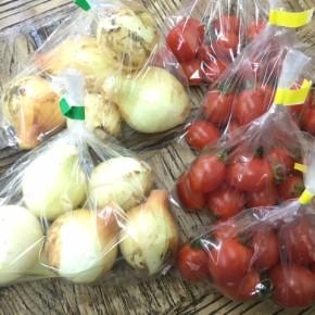 4/27(fri)本日の仕入れです。  うるま市 玉城勉さんの自然栽培のミニトマト・玉ねぎが入荷しました!