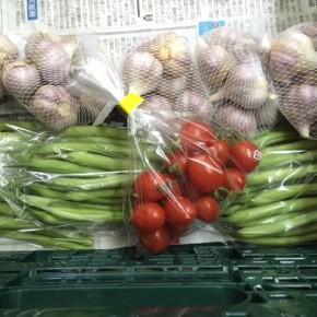 4/6(fri)本日の仕入れです。  うるま市 玉城勉さんの自然栽培のニンニク・ミニトマト・インゲンが入荷しました!