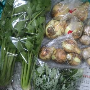 4/27(fri)本日の仕入れです。  北中城村ソルファコミュニティさんの自然栽培のヨモギ・玉ねぎ・セロリ・津堅島ニンニクが入荷しました!