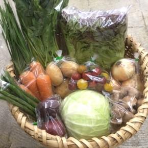 【第74回目】わが家のハルラボ商店『お野菜おまかせBOX』は5/7(mon)・8(tue)・9(wed)予約受付!5/12(sat)発送。受付はお電話にて承ります。☎098-943-9575(詳細はコチラをクリック)※写真は前回の内容です。