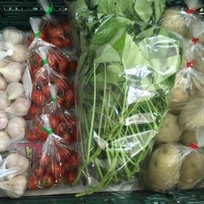 5/7(mon)本日の仕入れです。  うるま市 玉城勉さんの自然栽培のミニトマト・ニンニク・カンダバー、北中城村 ソルファコミュニティさんの自然栽培のジャガイモが入荷しました!