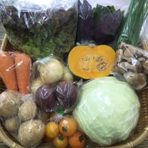 【第73回目】わが家のハルラボ商店『お野菜おまかせBOX』は先週土曜日に発送いたしました。今回の内容は自然栽培のサニーレタス・人参、  無農薬栽培のじゃがいも(ニシユタカ)・にら・新玉ねぎ・ハンダマ・きゃべつ・栗カボチャ・中玉トマト・生しいたけ・パッションフルーツをお送り致しました。次回受付は5/21(mon)・22(tue)・23(wed)お電話にて承ります。☎098-943-9575