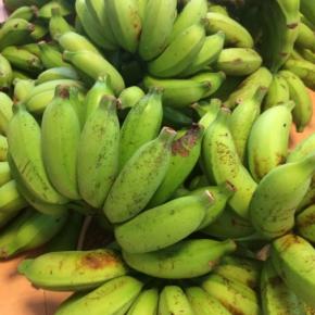 7/9(mon)本日の仕入れです。  うるま市 玉城勉さんの自然栽培のブラジル島バナナが入荷しました!