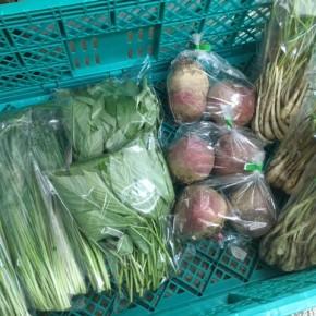 6/7(thu)本日の仕入れです。  糸満市 中村一敬さんの自然栽培のビーツ・無農薬栽培の島らっきょ、糸満市 金城聡さんの無農薬栽培のモロヘイヤ・ニラが入荷しました!