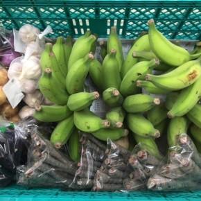 6/19(tue)本日の仕入れです。  うるま市 玉城勉さんの自然栽培の黒人参・なす・ブラジル島バナナ・島ニンニク・玉ねぎ・赤玉ねぎが入荷しました!