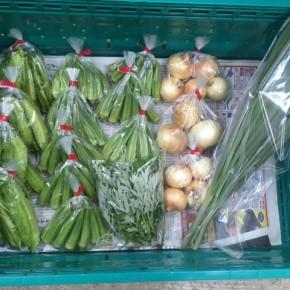 6/8(fri)本日の仕入れです。  北中城村ソルファコミュニティさんの自然栽培の角オクラ・玉ねぎ・うりずん豆・ヨモギ・レモングラスが入荷しました!