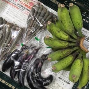 6/8(fri)本日の仕入れです。  うるま市 玉城勉さんの自然栽培の黒人参・なす・ブラジル島バナナが入荷しました!
