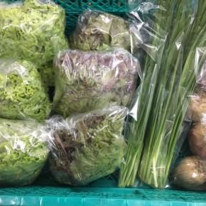 6/28(thu)本日の仕入れです。  糸満市 中村一敬さんの自然栽培のサニーレタス・グリーンリーフ・ビーツ・無農薬栽培のニラが入荷しました!