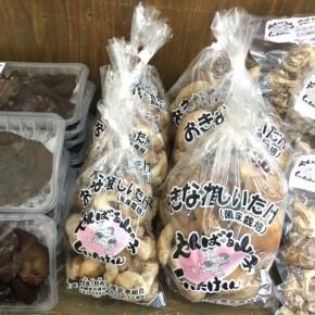 やんばる産おがくずで菌床栽培された生椎茸・キクラゲ・乾燥椎茸が入荷しました!