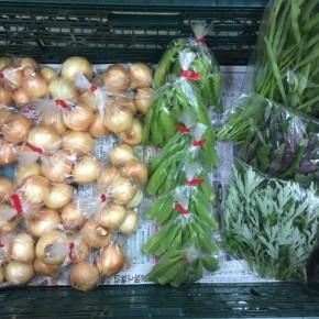 6/11(mon)本日の仕入れです。  北中城村ソルファコミュニティさんの自然栽培の角オクラ・玉ねぎ・うりずん豆・ヨモギ・ハンダマ・エンサイが入荷しました!