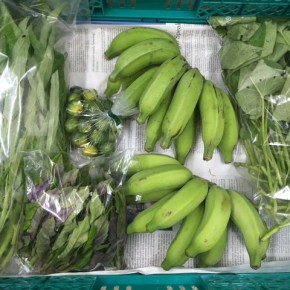 7/13(fri)本日の仕入れです。  うるま市 玉城勉さんの自然栽培の黄輝バナナ・カンダバー、北中城村ソルファコミュニティさんの自然栽培の四季柑・ハンダマ・エンサイが入荷しました!