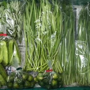 7/9(mon)本日の仕入れです。  北中城村ソルファコミュニティさんの自然栽培のシークワーサー・四季柑・うりずん豆・ヨモギ・にら・エンサイが入荷しました!