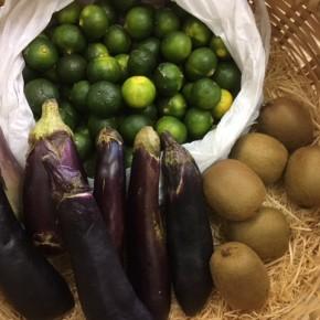 やんばるから森さんの無農薬栽培の野菜が、追加入荷しました!本日の入荷は島キウイ(サルナシ)・青切りシークワーサー・ナスです。次回の入荷は金曜日の予定です。