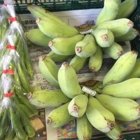 8/10(fri)本日の仕入れです。  うるま市 玉城勉さんの自然栽培の銀バナナ・丸オクラが入荷しました!