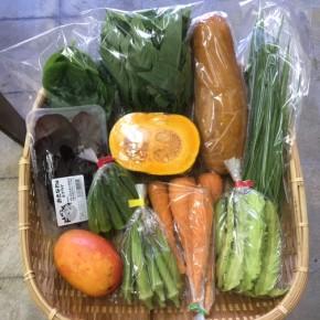 【第80回目】わが家のハルラボ商店『お野菜おまかせBOX』は8/13(mon)・14(tue)・15(wed)予約受付!8/18(sat)発送。受付はお電話にて承ります。☎098-943-9575(詳細はコチラをクリック)※写真は前回の内容です。
