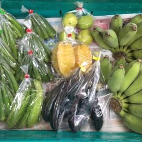 9/15(sat)本日の仕入れです。  うるま市 玉城勉さんの自然栽培の銀バナナ・なす、北中城村ソルファコミュニティさんの自然栽培のうりずん豆・角オクラ・ピンクグァバ・スターフルーツが入荷しました!
