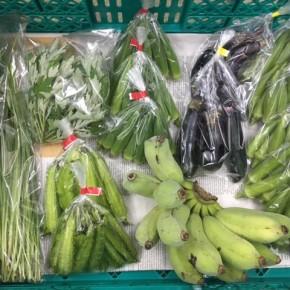 9/7(fri)本日の仕入れです。  うるま市 玉城勉さんの自然栽培のナス・黄輝バナナ・丸オクラ、北中城村ソルファコミュニティさんの自然栽培のヨモギ・うりずん豆・角オクラ・ニラが入荷しました!